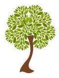 Vector tree illustration Royalty Free Stock Photo
