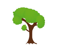 Vector tree isolated on white background Stock Image