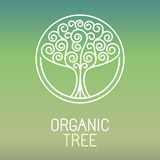 Vector tree logo Royalty Free Stock Image