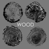 Vector tree rings background.Conceptual graphics. Royalty Free Stock Image