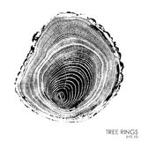 Vector tree rings background.Conceptual graphics. Stock Photos