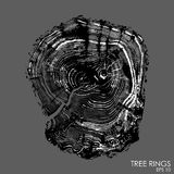 Vector tree rings background.Conceptual graphics. Royalty Free Stock Images