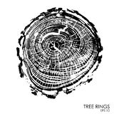 Vector tree rings background.Conceptual graphics. Stock Image