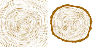 Vector tree rings background and saw cut tree trunk Royalty Free Stock Image