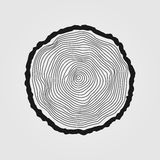 Vector tree rings background and saw cut tree trunk Stock Image