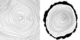 Vector tree rings background and tree log cutted Stock Photos