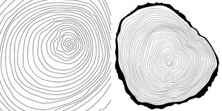 Vector tree rings background and tree log cutted Royalty Free Stock Photography