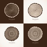 Vector tree rings conceptual background Stock Photo