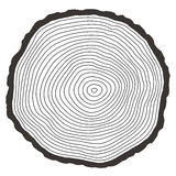 Vector tree rings Stock Images