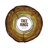 Vector tree rings slice with crack. Annual life texture. Woodgrain pattern. Backround Royalty Free Stock Image