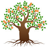 Vector tree with roots and flowers Stock Photography