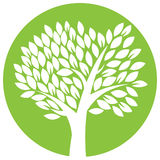 Vector tree in round Royalty Free Stock Photography