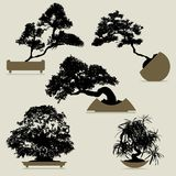Vector tree set... Royalty Free Stock Photo