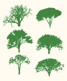 Vector Tree Set Illustration Stock Images