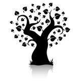 Vector tree (shape) Stock Image