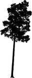 Vector Tree Silhouette. Vector artwork created in Adobe Illustrator.  Isolated tree in black and white silhouette for clipart Stock Photo