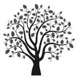 Vector tree silhouette Stock Photo