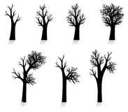 Vector tree silhouette (no trace) Royalty Free Stock Photos