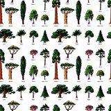 Vector tree sketch hand drawn style types green forest pine treetops collection of birch, cedar and acacia or greenery royalty free stock photo