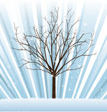 Vector_tree_winter Fotografia Stock Libera da Diritti