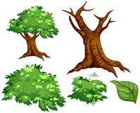 Vector Tree. For you background Stock Photography