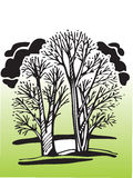 Vector trees. Vector hand draw image of trees - protect our planet royalty free illustration