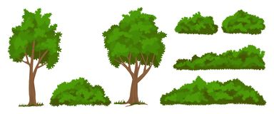 Free Vector Trees And Bushes Set Royalty Free Stock Photography - 126146157