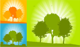 Vector trees - landscape  color Royalty Free Stock Photography