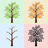 Vector trees, seasons Stock Photos