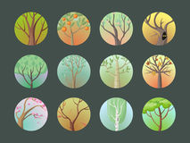 Vector Trees Set. Collection of Different Types Stock Photos