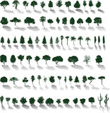 Vector trees with shadows. Set of  silhouettes of trees and bushes with shadows Stock Photos