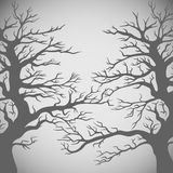 Vector trees silhouette. Royalty Free Stock Photos