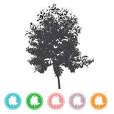 Vector trees in silhouettes Create many trees with leaves a Stock Image