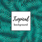 Vector trendy, fashionable seamless pattern. Big green exotic tropical palm leaves of banana or coconut trees stock illustration
