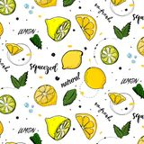 Vector trendy summer decoration. Lemon fruit drawing with mint leaves. Fresh juicy natural vegetarian sweet texture. Vector trendy summer decoration. Lemon fruit Stock Photos