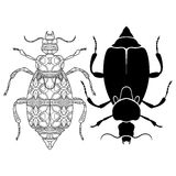 Vector Tribal Decorative Beetle royalty free illustration