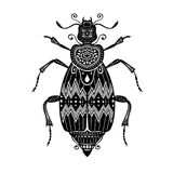 Vector Tribal Decorative Beetle Royalty Free Stock Photography