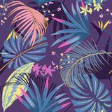 Vector tropica безшовного красивого художнического pastale лета яркое Стоковое Изображение RF