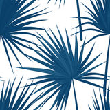 Vector tropical background with jungle plants. Seamless tropical pattern with sabal palm leaves. Denim indigo colors. Stock Images