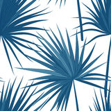Vector tropical background with jungle plants. Seamless tropical pattern with sabal palm leaves. Denim indigo colors. Stock Photography