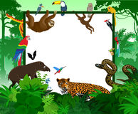 Vector tropical card with jungle animals. Jungle style rainforest illustration. Royalty Free Stock Images