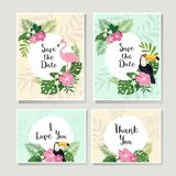 Vector tropical cards set. Cute cartoon cards with tropical leaves, flowers, bids Stock Photos