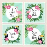 Vector tropical cards set. Cute cartoon cards with tropical leaves, flowers, bids Royalty Free Stock Image