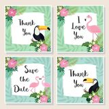Vector tropical cards set. Cute cartoon cards with tropical leaves, flowers, bids Stock Images
