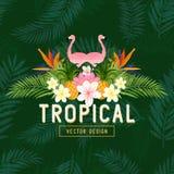 Vector tropical del verano Fotos de archivo libres de regalías