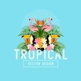 Vector tropical del verano Foto de archivo
