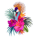 Vector tropical design with a bird. Elegant floral and zoo vector composition. A print for a tshirt. Tropical flowers and exotic bird. Vintage style illustration Royalty Free Stock Image