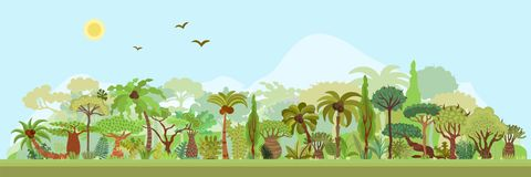 Vector tropical rainforest landscape with palms and other tropical trees. Tropical forest panoramic illustration. Flat. Vector tropical forest landscape with stock illustration