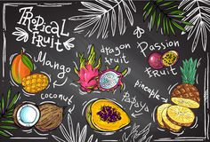 Vector tropical fruit Stock Image