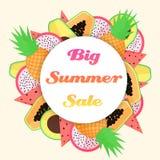 Vector tropical fruit big summer sale template. Stock Photos